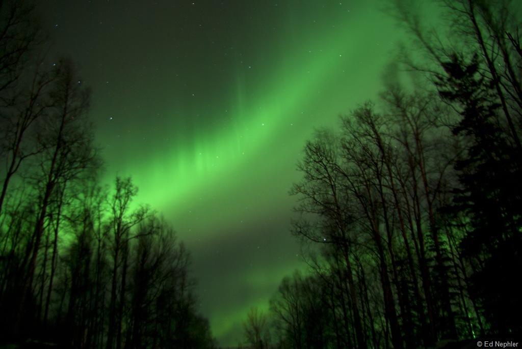 Northern Lights 030911.12.1024