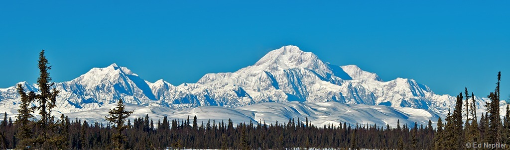 Denali from Petersville Rd. 020611.01.1024