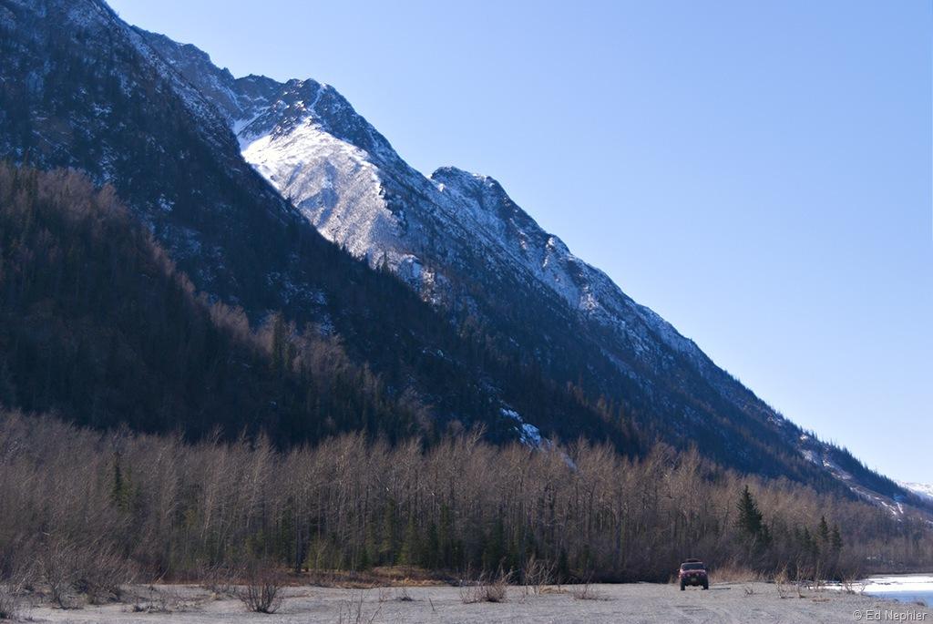 Gertie - Knik River 041511.01.1024