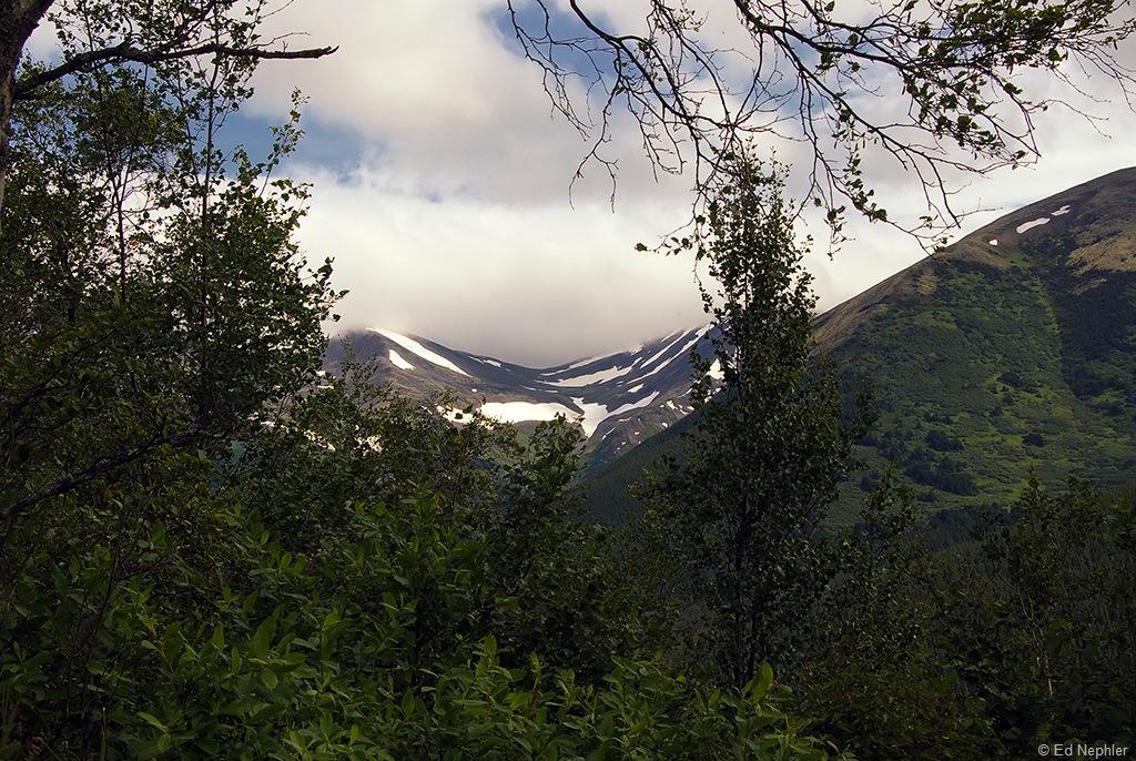 Hope - Palmer Creek Rd Views 072910.04.1024