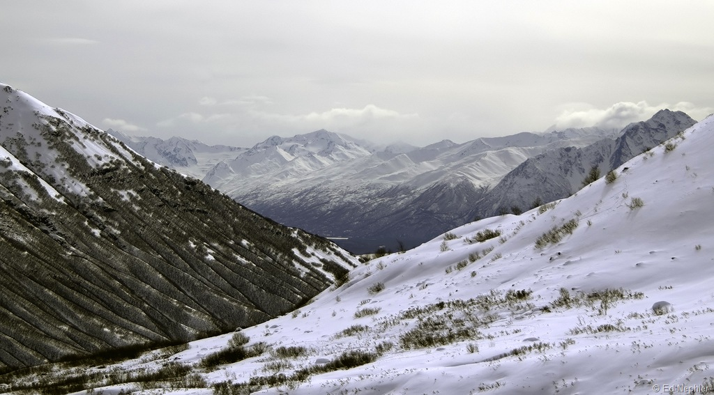 Hatcher Pass View 040110.01.1024