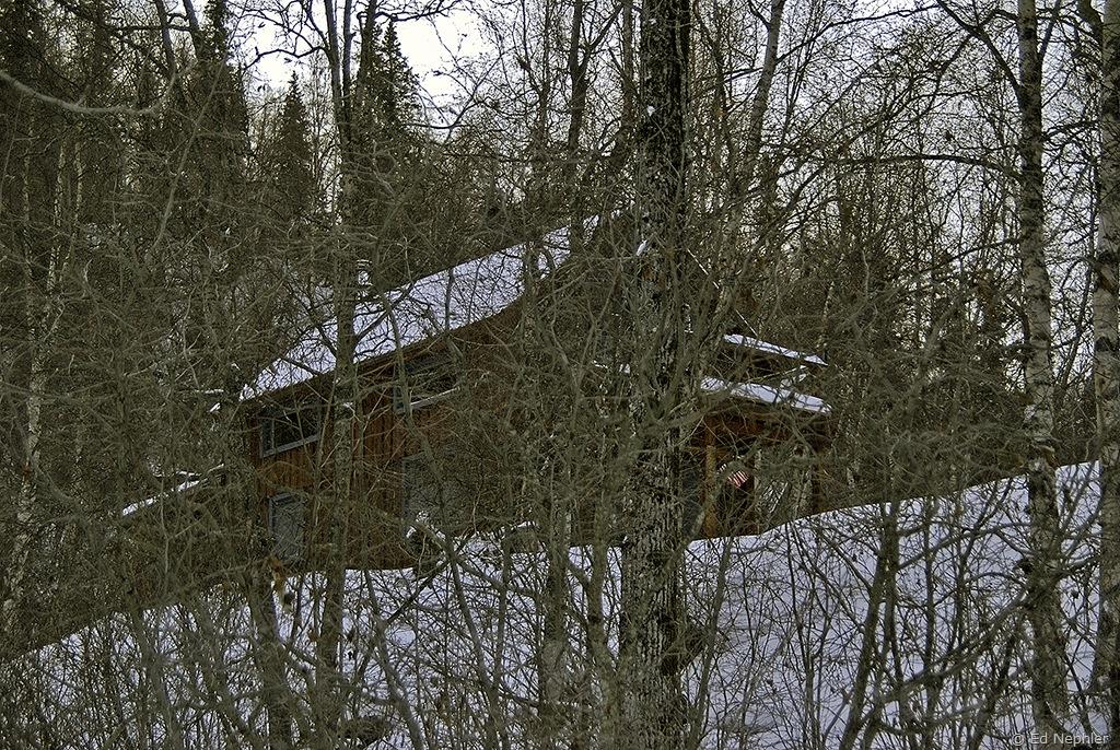 Remote Cabin 010710.01.1024