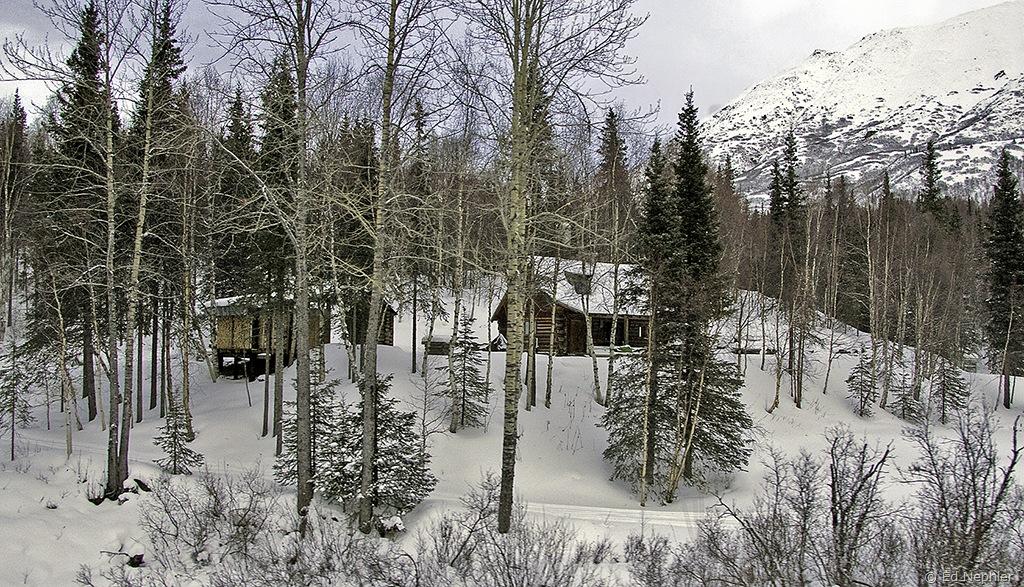 Remote Cabin 010710.02.1024