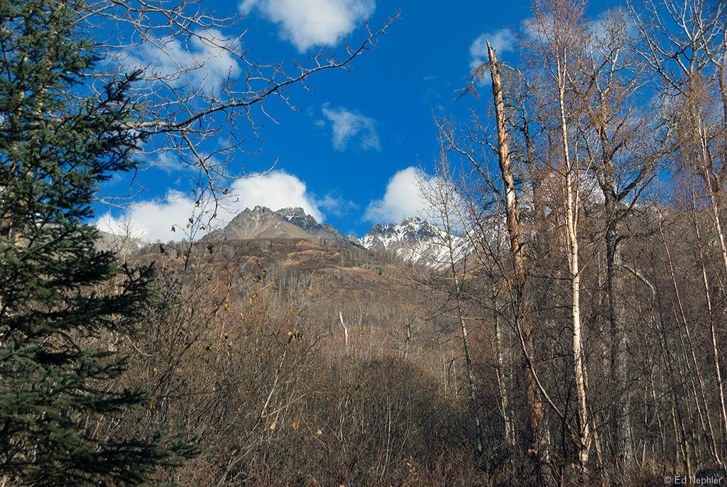 Creek View 102110.01.1024