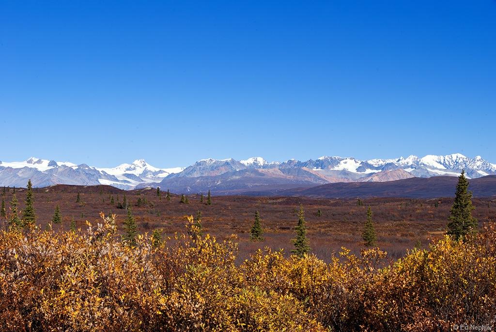 Denali Hwy Views 091510.01.1024