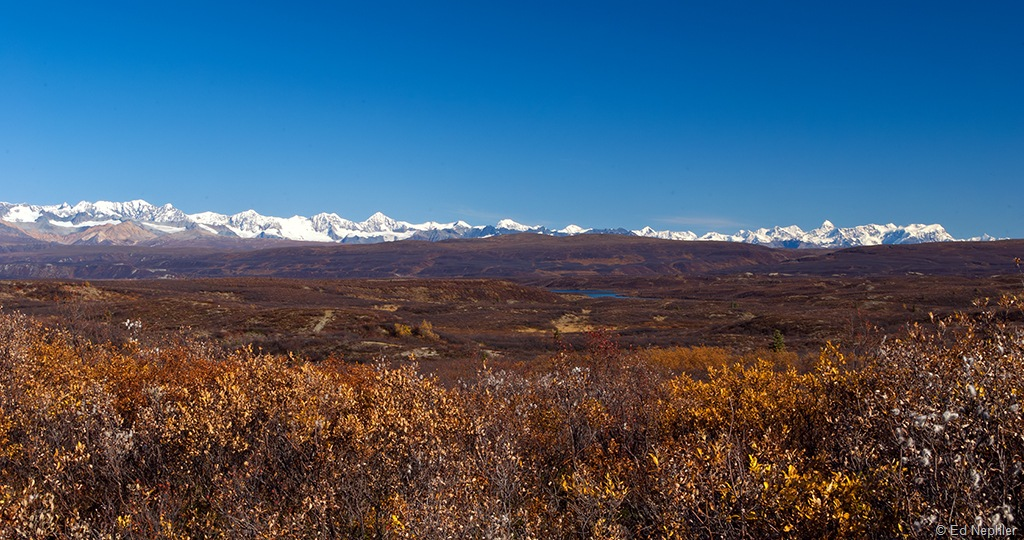 Denali Hwy Views 091510.02.1024