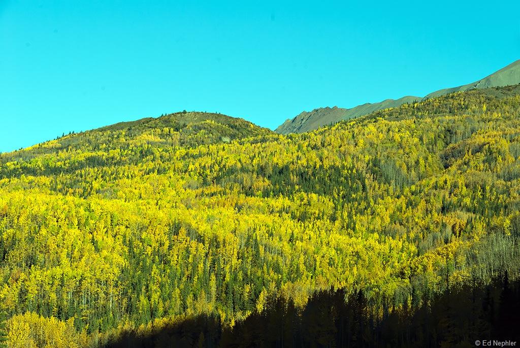 Fall Colors 091510.04.1024