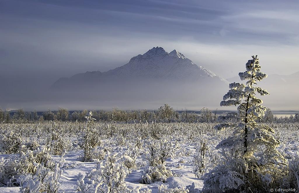 Pioneer Peak 012510.01.1024