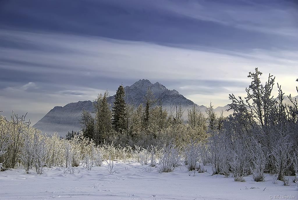 Pioneer Peak 012510.02.1024