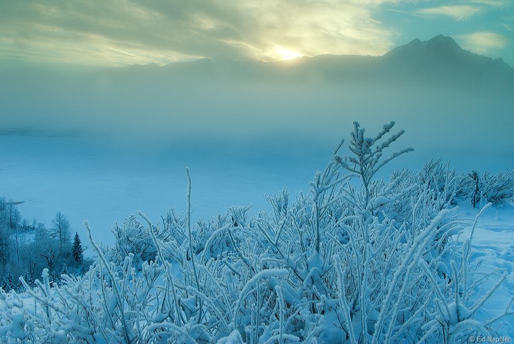 Foggy n Frosty 120810.01.1024